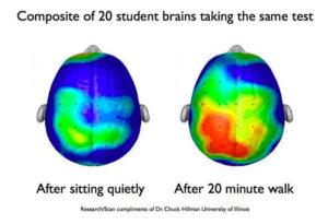 student-brains